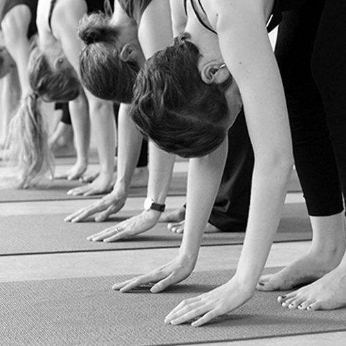 19. – 20. Juni 2021 – Beweglichkeit und Kraft: Intensive Vorbeugen und Drehungen / Anpassen von Asana