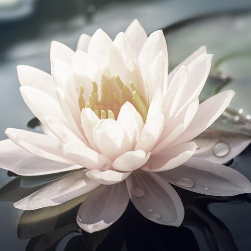 30. Oktober 2021 – Mandukya Upanishad: OM und die vier Ebenen des Seins